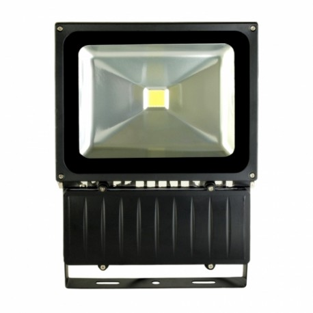 Halogen LED 100W EKO