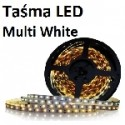 Taśmy LED Multi White